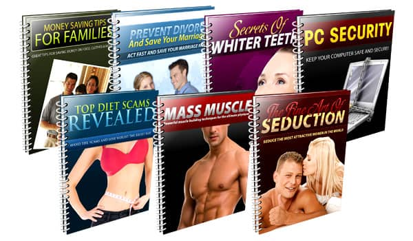 PLR - Niche Domination Series